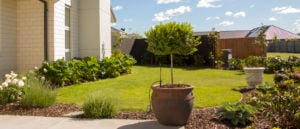 Landscape Architecture & Design Consultancy